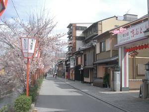 images/blog-kyouodori.jpg